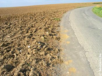 Désert agricole à Cour-sur-Heure - © Sentiers.be
